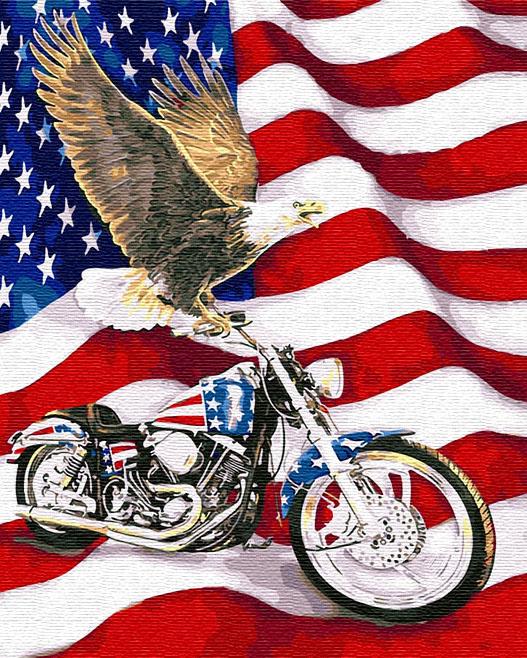 Картина по номерам 40x50 Орел на мотоцикле